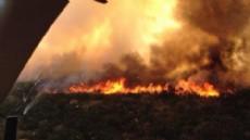 Un incendio forestal que se reactiv� tras afectar la semana pasada 25 hect�reas de bosque nativo en la zona de El Verde, en la localidad neuquina de Moquehue, y se encuentra fuera de control.